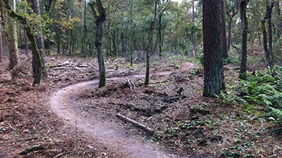 MTB route Horst